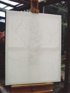 My canvas, looking closely you can see the faint pencil lines of the rose...