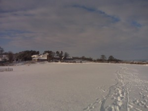 Deep snow up at the farm this past Sunday...